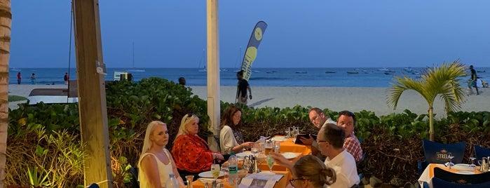 Barracuda Restaurant is one of สถานที่ที่ Celia ถูกใจ.