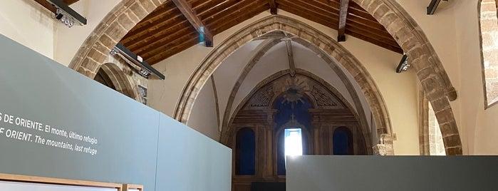 Torre De Orejón De La Lama Museo de la Tortura y el Ocultismo is one of Santander To-Do's.
