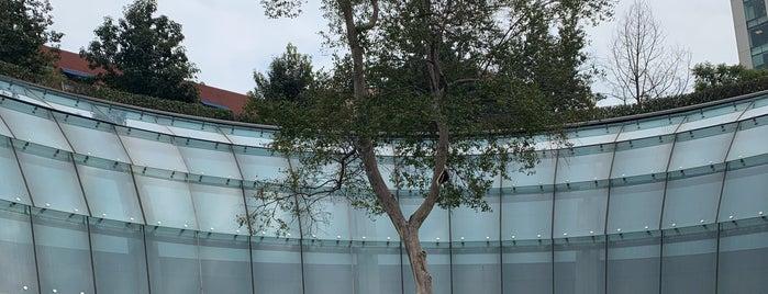 Garden Santa Fe is one of Lugares favoritos de Claudia.