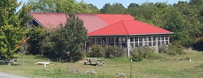 Backroom Brewery is one of Virginia.