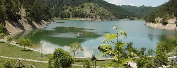 Sünnet Gölü Doğal Yaşam Oteli is one of Bolu.