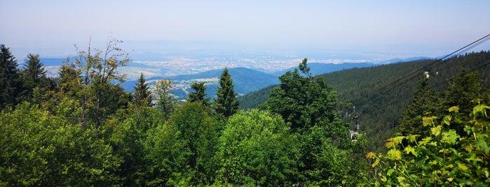 Die Bergstation is one of Schwarzwald - To Do.
