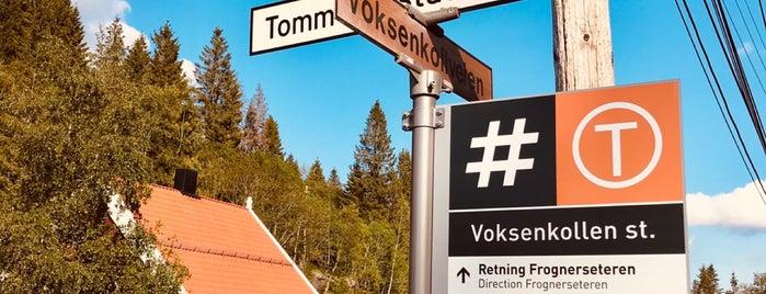 Voksenkollen (T) is one of mody.
