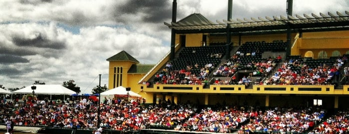 Champion® Stadium is one of ESPN Wide World of Sports.