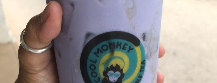 Monkeys. Bubble Tea is one of Miami Beach.