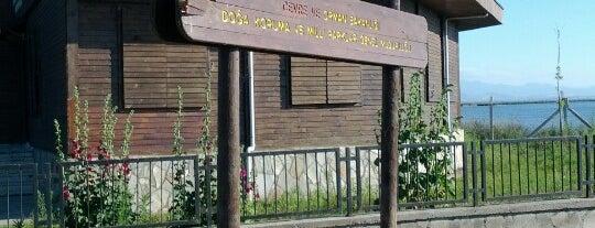 Kızılırmak Deltası Kuş Cenneti is one of Posti che sono piaciuti a CaNaN.