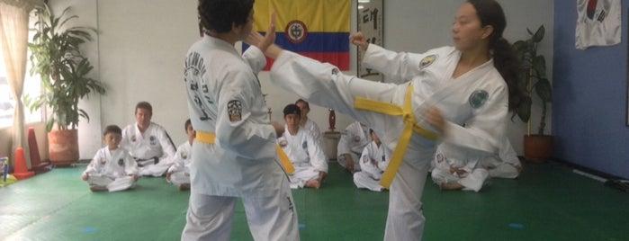 Academia Colombiana De Taekwondo is one of sitios preferidos.