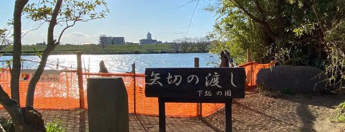 矢切の渡し is one of Masahiro'nun Beğendiği Mekanlar.