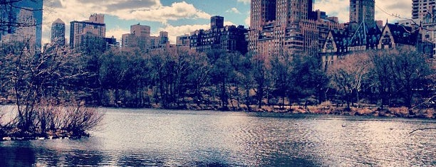 Central Park is one of If I ever go back to New York.