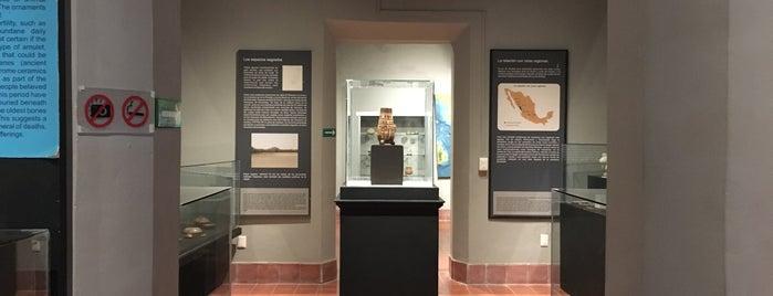 Museo de Antropologia e Historia is one of Posti che sono piaciuti a Alberto Isaac.