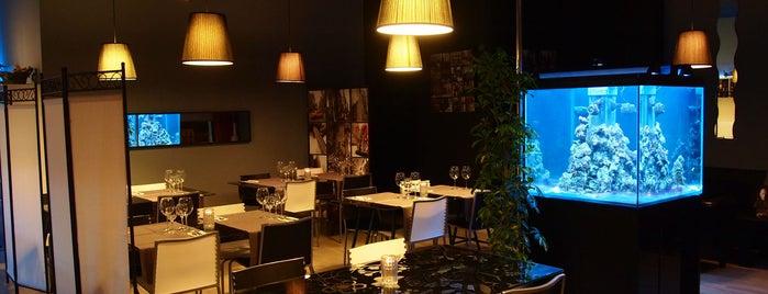 Restaurant & Lounge 113 is one of Negocios con Visitas Virtuales en Google.