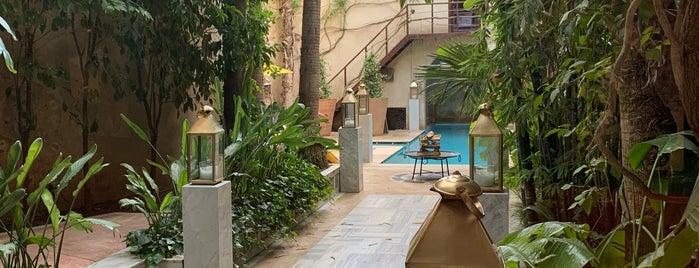El Fenn is one of International: Hotels.