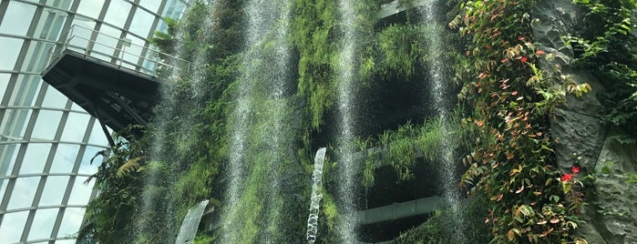 Cloud Forest is one of Singapore.