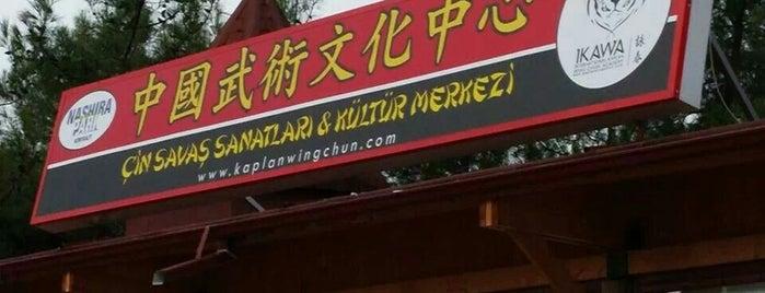 Çin Savaş Sanatları ve Kültür Merkezi 中國武術文化中心  - IKAWA is one of Mekanlar.
