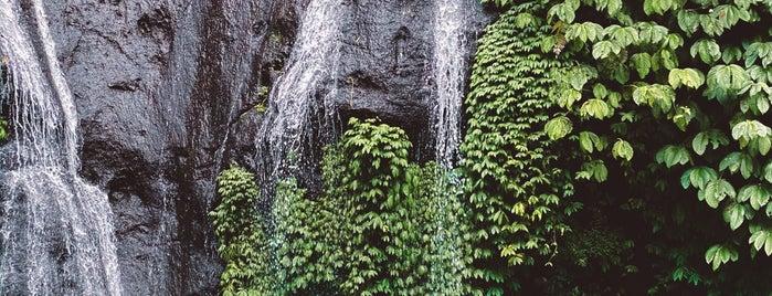 Gitgit Twin Waterfall is one of B.
