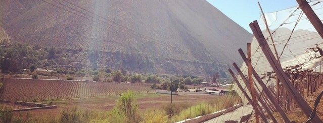 Peralillo,  Valle de Elqui is one of Lieux qui ont plu à Andres.