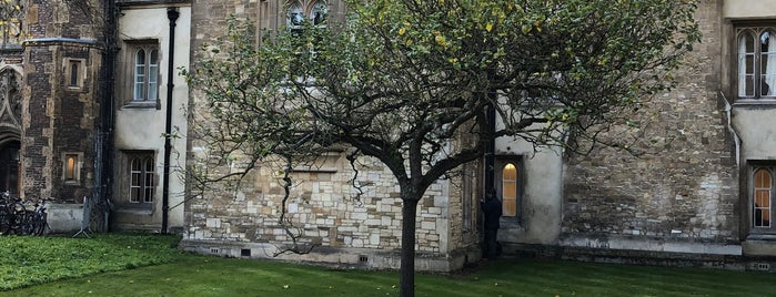 Newton's Apple Tree is one of Cambridge.