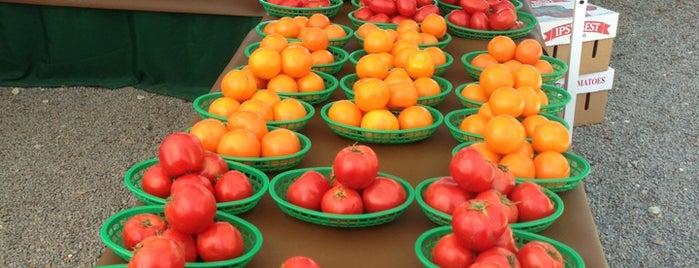 Brickell Farmers Market is one of Patty'ın Beğendiği Mekanlar.