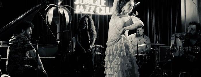 The Jungle Jazz Club By Amazónico is one of Madrid.
