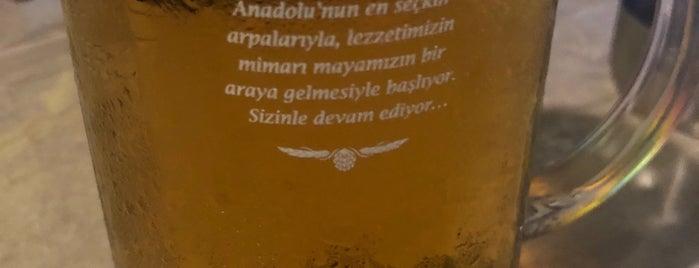 Mekan Sestra is one of Sinan : понравившиеся места.