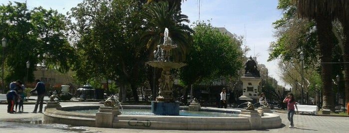 Plaza 25 de Mayo is one of Cuyo (AR).