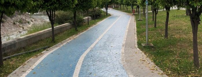 Mezitli Belediyesi Kadın Üretici Pazarı is one of สถานที่ที่ Sadalmelek ถูกใจ.