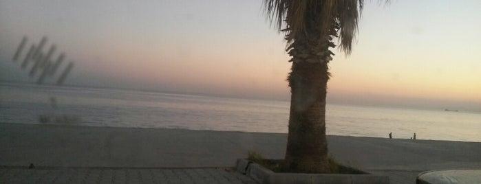 Sea Life Resort Beach is one of Lugares favoritos de Zeynep.