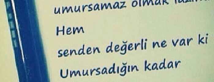 Acar Karavan Gözleme is one of Posti che sono piaciuti a Tuğba.