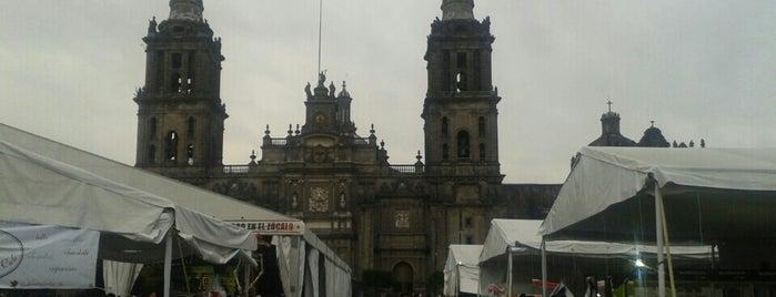 XV Feria Internacional del Libro en el Zócalo is one of Tempat yang Disukai Ines.