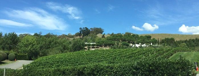 Black Barn Vineyards is one of สถานที่ที่ Simone ถูกใจ.