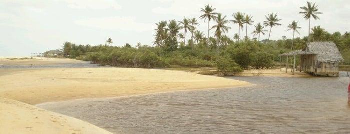 Praia dos Nativos is one of Locais curtidos por Dade.