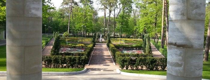 Бучанский городской парк is one of выжить летом в городе.