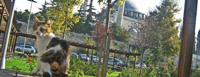 Çarşamba is one of Locais salvos de safia.