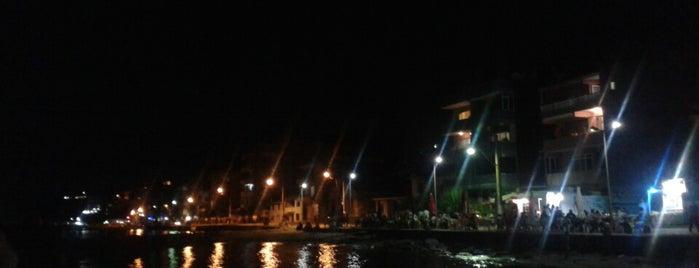 Sea World Cafe & Fast Food Beach Club is one of Muazzez'in Beğendiği Mekanlar.