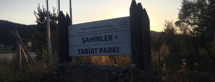 Şahinler Tabiat Parki is one of Türkiye'nin Kamp Alanları.