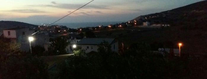 Defi Derya is one of สถานที่ที่บันทึกไว้ของ Mine.
