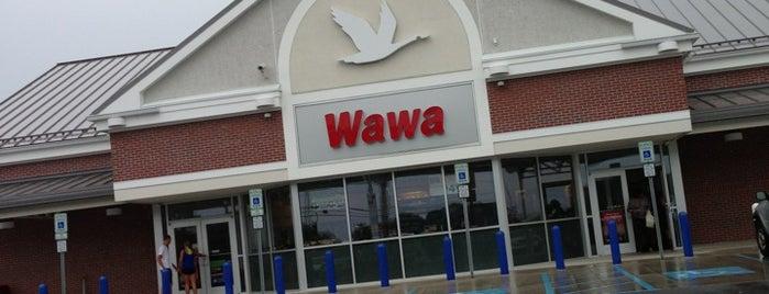 Wawa is one of Lugares favoritos de Matthew.