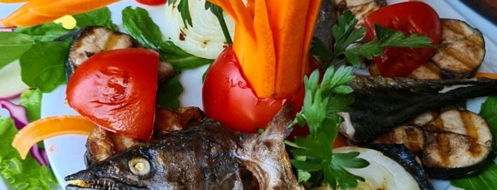 Yeni Canlı Balık Restaurant is one of Yalova.