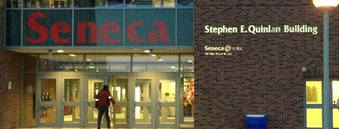 Seneca@York Campus is one of Locais curtidos por Fer.