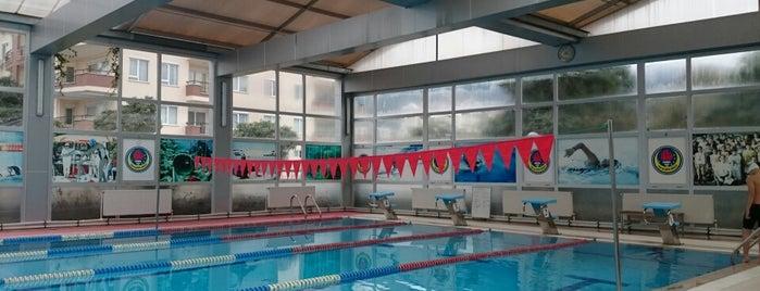 Ted Alanya Koleji Yüzme Havuzu is one of Orte, die Yunus gefallen.