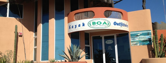 Baja Outdoor Activities (BOA) is one of Locais curtidos por Griffin.