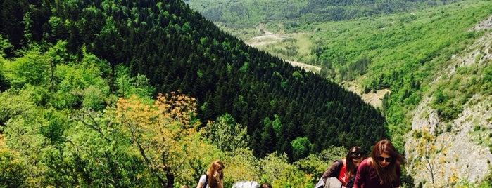Pinarbasi Park Ilica is one of Batı ve Orta Karadeniz.