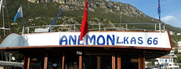 Anemon dalıs teknesi is one of ** TRAVELLERS ' 2 **.