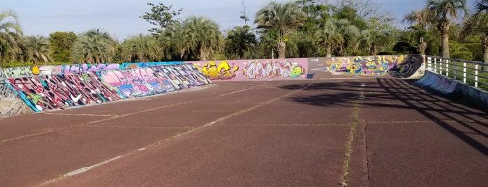 蓮沼海浜公園ローラースケート場 is one of モリチャン : понравившиеся места.