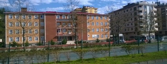 Ahmet Hamdi-Nurzan Ishakoğlu Anadolu Lisesi is one of rasot karaagac organik alabalık çiftliğinde.