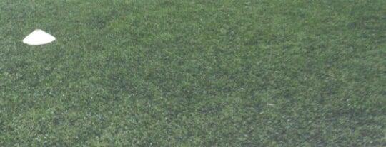 Grün FC is one of Lieux qui ont plu à Cristián.