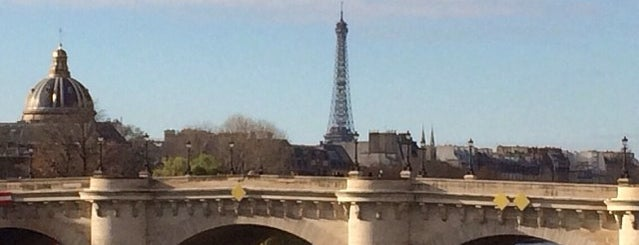 Pont Neuf is one of Paris.