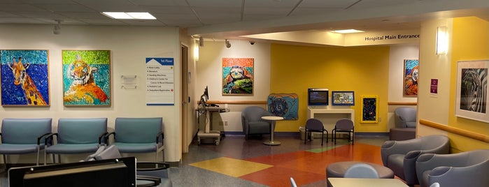 """Peyton Manning Children's Hospital at St.Vincent is one of My """"Bucket list""""."""