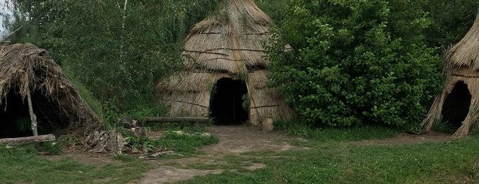 Biskupin Muzeum is one of สถานที่ที่ Krzysztof ถูกใจ.