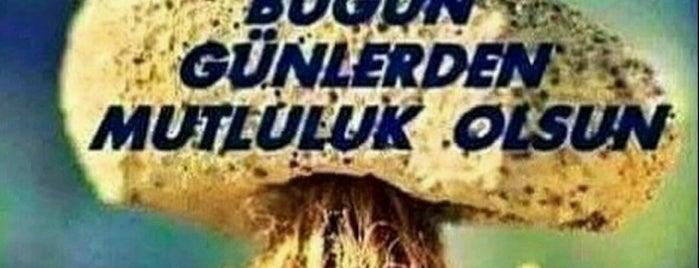 Göztepe E.A Onkoloji Pol. is one of Lugares favoritos de İnci.